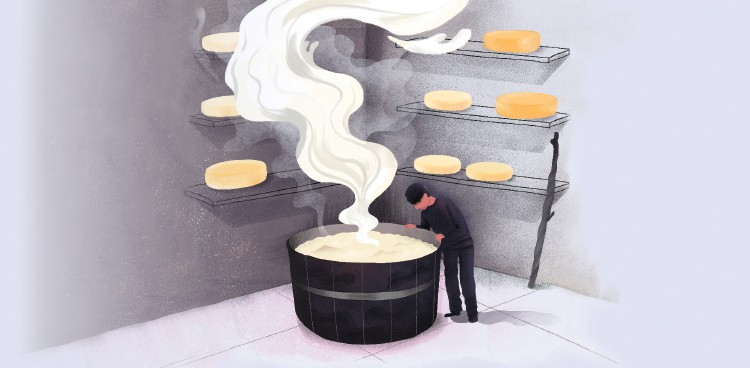 Illustration of a cheesemaker standing over a steaming vat in a cave with aging cheeses
