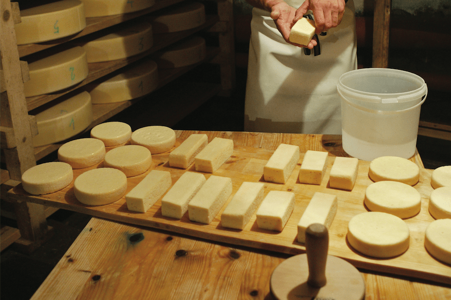 Cheesemaker molding cheese